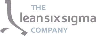 The Lean Six Sigma Company Italia s.r.l.
